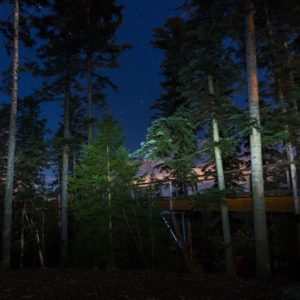 Le sentier des cimes de nuit.