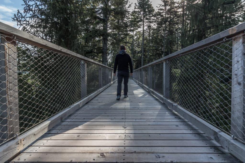 Sentier des cimes au coeur de la Forêt Noire