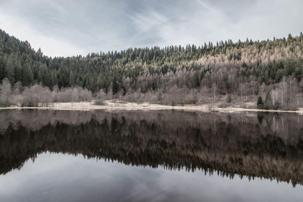 Le lac Sankenbachsee