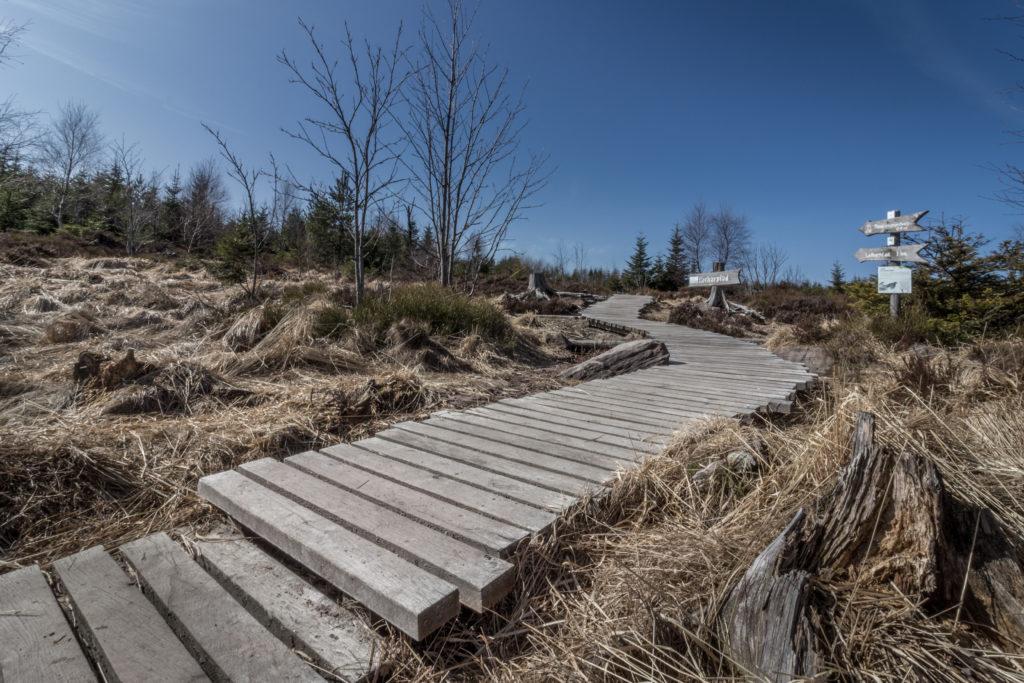 Sentier de Lothar - Lotharpfad