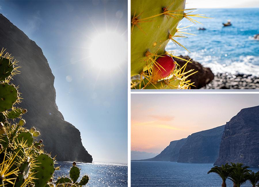 Gorges de Masca & Los Gigantes - Tenerife