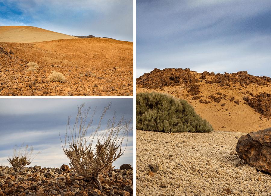 Les paysage lors de l'ascension du Teide - Tenerife